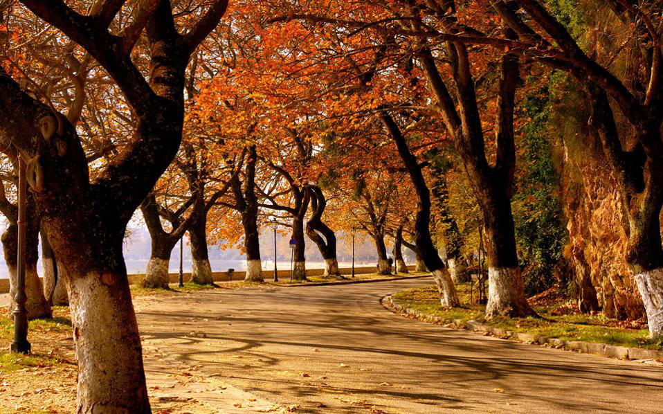 A Four Season Destination Ioannina, Cross the lake trees with yellow leaves